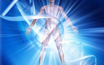 201 Physiology of Endurance Training